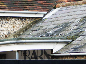 Specialist Slating Services in Steyning